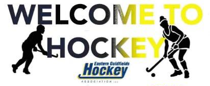 Welcome To Hockey Hits Off
